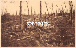 Ruines De La Forêt D'Houthulst : Avion Allemand - Houthulst - Houthulst