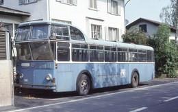 Ancien Autobus FBW  B71 HU Hecklenker  (Suisse)   -  15x10cms PHOTO - Buses & Coaches