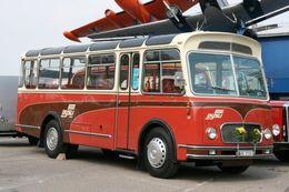 Ancien Autobus FBW  CH 1958  (Suisse)   -  15x10cms PHOTO - Buses & Coaches