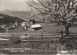 N°6684 R -cpsm Avelengo  Haqfling -rifugio Zuegg Hütte- - Other Cities