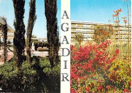Agadir - Jardins - Multivues - Agadir