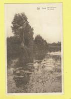 * Genk (Limburg - Limbourg) * (Nels, Uitg Claes - Colson) Aan De Vijvers, Aux étangs, Rare, Old, CPA - Genk