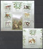 BC1317 2010 MOZAMBIQUE MOCAMBIQUE FAUNA MEIO AMBIENTE ANIMALS MONKEYS MACACOS 1SH+1BL MNH - Apen