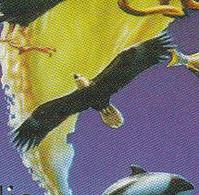 Turkmenistan 1999, Bird, Birds, Eagle, Parrot, Penguin, Whale, Owl, M/S, MNH** - Uilen