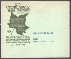 Italia Regno Busta Pubblicitaria Ferri Battuti Mingazzi Bologna VF/F - Publicity