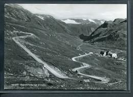 Norway Sognefjellveien Ved Krossbu -51__(3960) - Norvegia