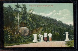 Singapore Penang Botanical Garden__(2861) - Singapour