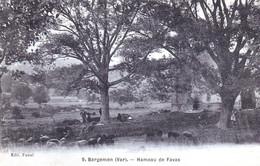 CPA - 83 - Bargemon - Hameau De Favas - 2 Scans - Bargemon