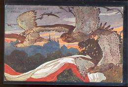 Sokol Bird With Flag__(245) - Otros