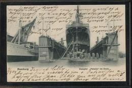 Steamers Dampfer Palatia Im Hamburg Dock -04__(1976) - Passagiersschepen