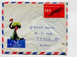 RDC - Affranchissement Sur Lettre Illustrée - Animaux  Félin - Unclassified