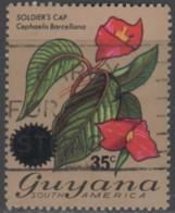 Guyana - #234 - Used - Guyana (1966-...)