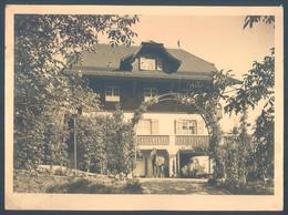 LU Luzern Kastanienbaum Landhaus Haecky Jean Photo 11 X 15.5 Cm - Plaatsen