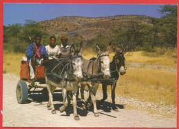 A Donkey-Cart In Namibia, Heads Towards The Ugab Vingerklip, Eselkarren - Namibia