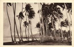 PC CPA SAMOA, PACIFIC, UN ORAGE SUR SAMOA, Vintage Postcard (b19450) - Samoa