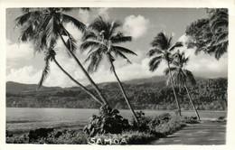 PC CPA SAMOA, PACIFIC, BEACH SCENE AND PALM TREES, Vintage Postcard (b19440) - Samoa