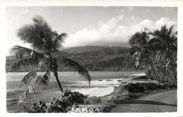 PC CPA SAMOA, PACIFIC, BEACH SCENE AND PALM TREES, Vintage Postcard (b19442) - Samoa
