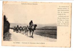 LIBAN  CPA CARAVANE DE CHAMEAUX DANS LABEKA'A  Collection Mulsant Chevalier . NON CIRCULEE - Lebanon