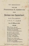 Souvenir De Communion VAN CAUWELAERT Herman Te  ONZE-LIEVE-VROUW-LOMBEEK (29/03/1923) - Andachtsbilder