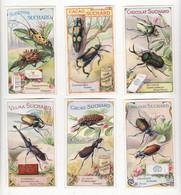 Chromo   CHOCOLAT SUCHARD    Lot De 12    Série 250   Insectes, Scarrabées Etc     10.6 X 6.1 Cm - Suchard