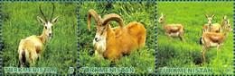 Turkmenistan 2009, Fauna, 3v In Strip - Turkmenistán