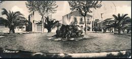 °°° GF813 - CITTANOVA - VILLA COMUNALE (RC) 1960 °°° - Altre Città