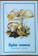 Petit Calendrier De Poche  2003  Champignon Hydne Commun Pied De Mouton  Pharmacie Angers - Klein Formaat: 2001-...