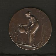 Médaille (Société Nationale Des Chemins De Fer  SNCF) Attribuée à Charmiaux Léon Chef De Halte Morienval (signé Delpech) - Professionals / Firms
