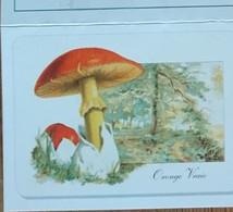 Petit Calendrier De Poche  2001  Champignon Oronge Vraie  Herboristerie  Grenoble - Klein Formaat: 2001-...