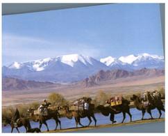 (S 18) Greetings From Mongolia (camels Caravan) - Mongolia