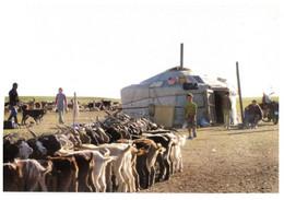 (S 18) Greetings From Mongolia (goats) - Mongolia