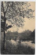 [ LIMB ]  Staelen  --    Les étangs  (carte Spécimen) - Genk