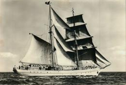 Segelschulschiff Wilhelm Pieck - Voiliers