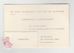 Geboortekaart-birthcard-Geburtskarte-carte De Naissance 1965 Klundert (NL) - Nacimiento & Bautizo