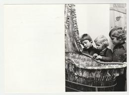 Geboortekaart-birthcard-Geburtskarte-carte De Naissance 1978 Mierlo-hout Helmond (NL) - Nacimiento & Bautizo
