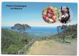 Ile Maurice - Mauritius  -  Plaine Champagne - Mauritius