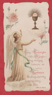Image Pieuse - SANTINO - Holly Card - N° 220 - Devotion Images