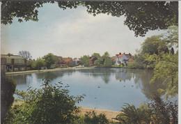 TADWORTH, Surrey - The Pond Walton-on-the-Hill - Surrey