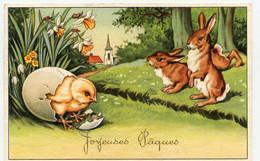 Joyeuses Pâques, Petit Poussin Sortant De L'oeuf. Lapins. - Altri