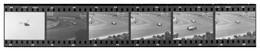 Lot De 9 Photos De Bandelettes De Négatifs - Circuit De Formule 1 - F1 - Tribune - Dunlop - Sortie De Circuit - Cars