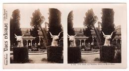 Photo Stéréoscopique Vues D'Italie - S.134 1173 - Rome - Les Thermes - Cloître De Michel-Ange - Stereoscopic
