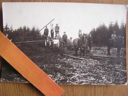 DEBARDAGE BOIS Chevaux Wagonnet Wagon Voie 60 ? Métiers Du Bois Bûcherons Région PRESGAUX ? Rare ! Belgique Carte Photo - Autres