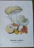 Petit Calendrier De Poche 2004 Champignon  Russule Verdâtre Pharmacie Aulnay De Saintonge - Klein Formaat: 2001-...