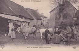 AUVERGNE/ATTELAGE BOEUFS RETOUR A LA FERME (ANA) - Auvergne