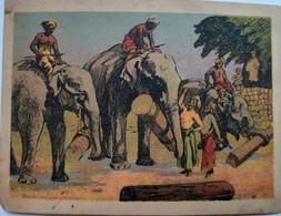 Gustav Hegenbeck's - Indische Völkerschau - Mülhausen - Elefanten - Eléphants - Otros