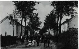 Rebecq - Avenue Zaman - Rebecq