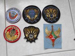 PATCHS  PARA 13 RDP (prix Pour 1 Patch ) - Militaria
