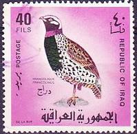 Irak - Schwarzer Frankolin (Francolinus Francolinus) (MiNr: 525) 1968 - Gest Used Obl - Iraq