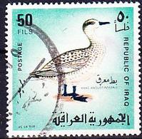 Irak - Marmelente (Anas Angustirostris) (MiNr: 526) 1968 - Gest Used Obl - Iraq