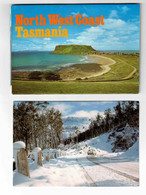 TASMANIA, 1 Old Fold-Out Postcard & 1 4x6 Postcard - Cartoline